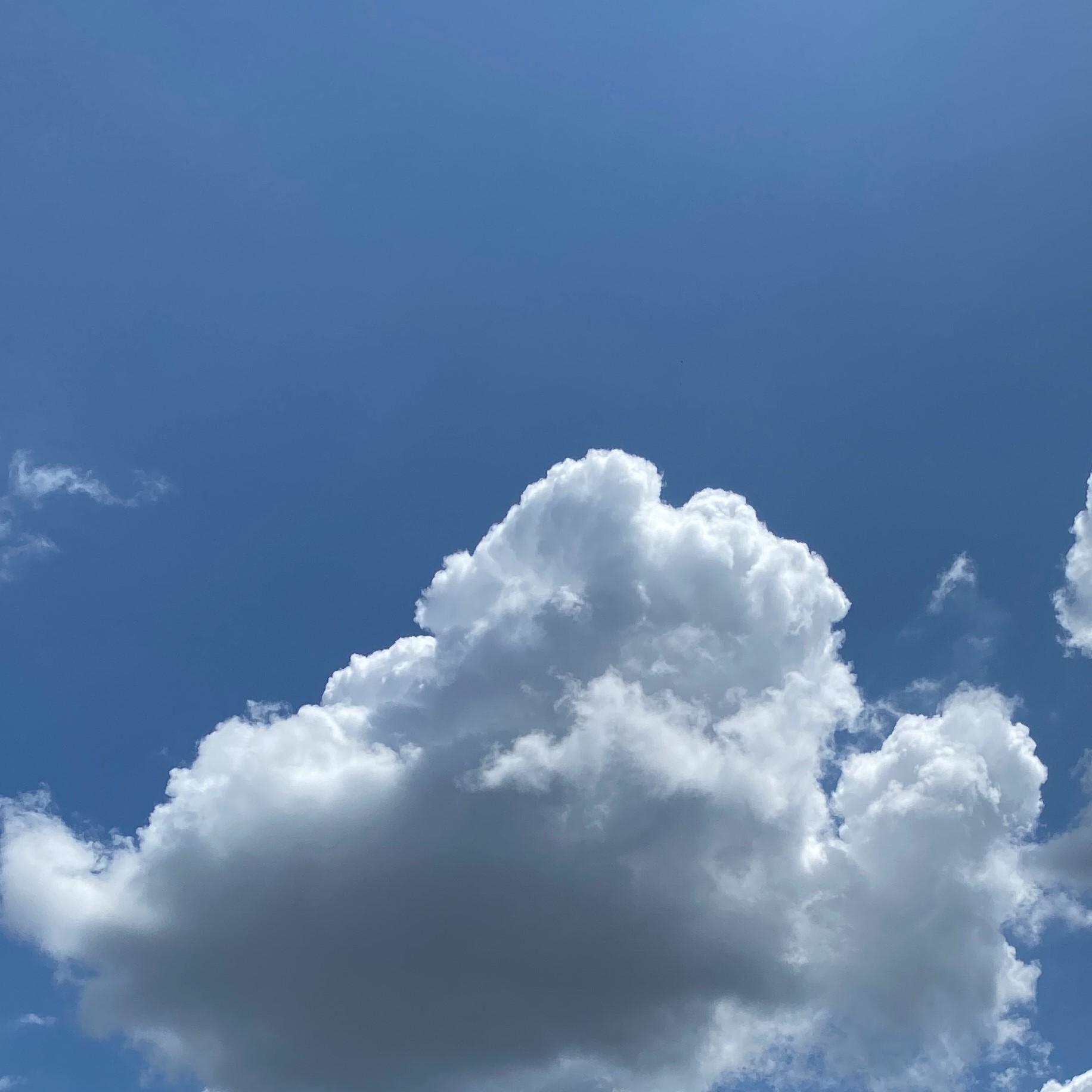 おいしい酒倶楽部:8月1日(土)梅雨明け宣言の雲
