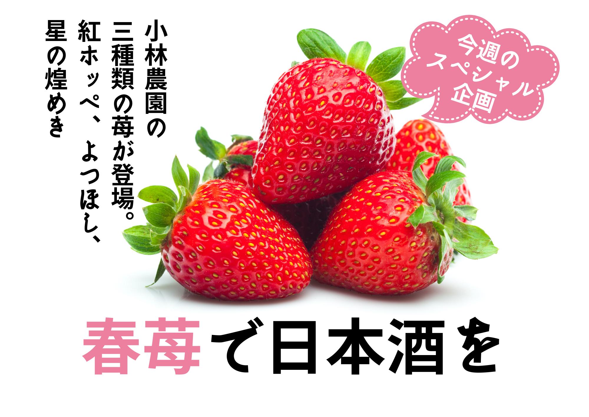 小林農園の春苺