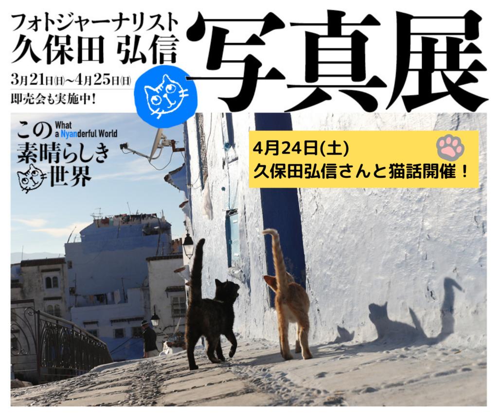 久保田弘信さんと猫談議