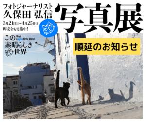 順延のお知らせ:「久保田弘信さんと猫の話をしよう」