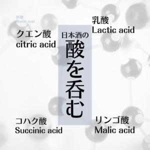 【限定10名】:日本酒の酸を呑む